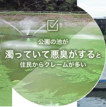 濁っていて悪臭がする公園などの池の浄化
