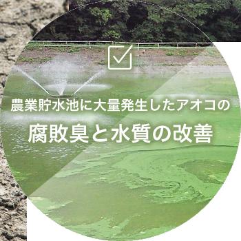 農業貯水池に大量発生したアオコの腐敗臭と水質の改善