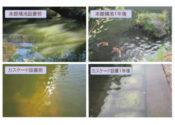 愛知県緑化センター(水の回廊、カスケードと本館横の池)