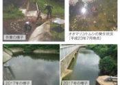 大畔池の水質改善対策