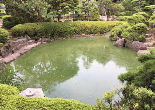 寺社庭園内の池の水質改善対策(Before)